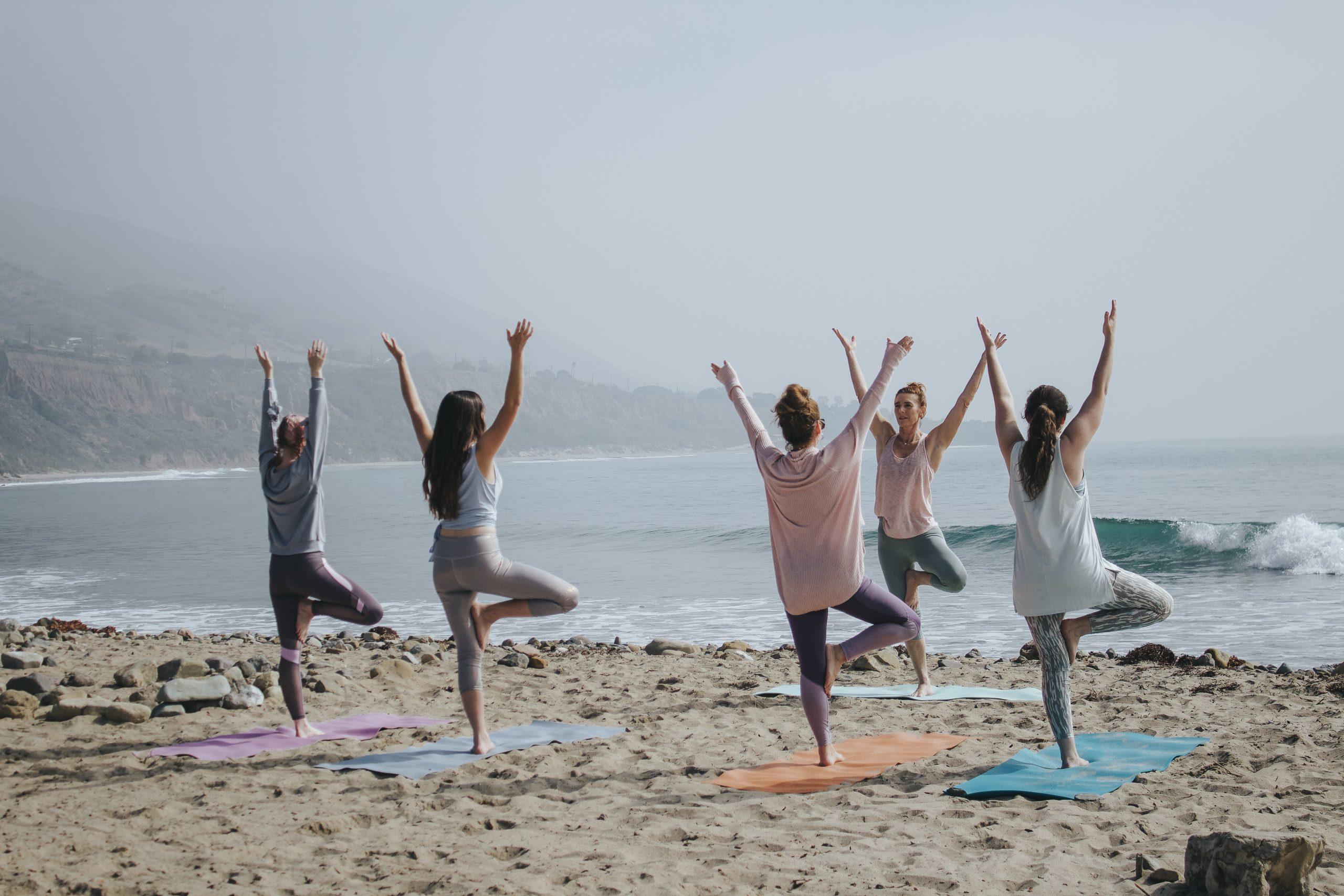 yogi (2)